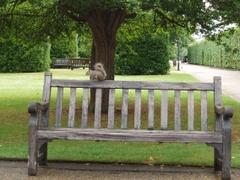Hurrah_craft_hyde_park_london