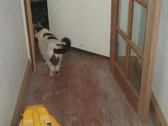 Hurrah_craft_house_shmoo_door